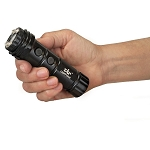 ZAP Light Mini 800,000 Volt Flashlight Stun gun